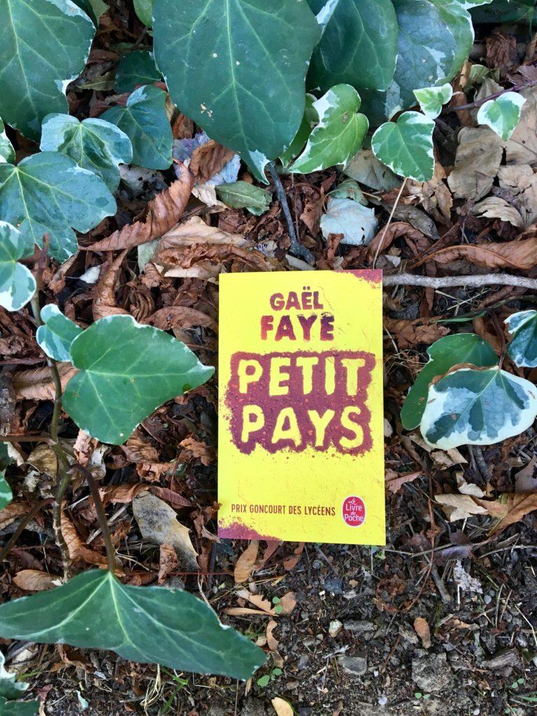 Petit pays : un roman de Gaël Faye