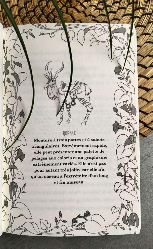 L herboriste de hoteforais : livre herboristerie