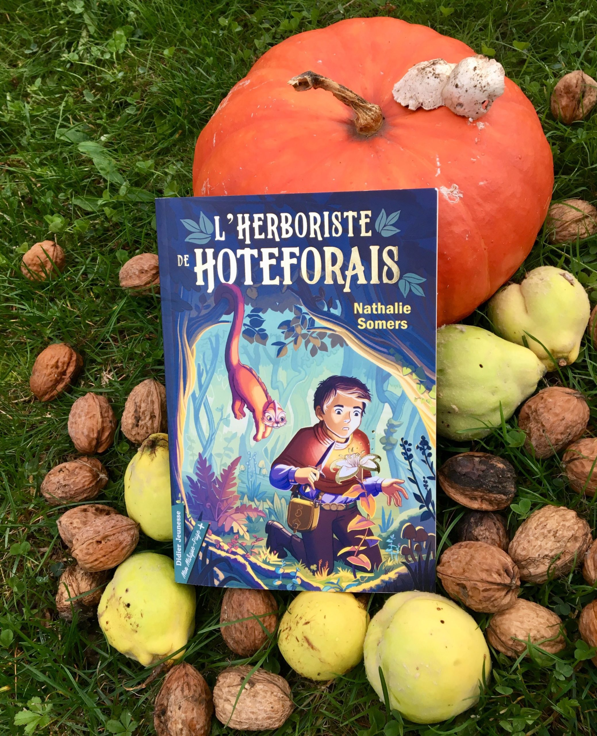 Livre herboriste : L herboriste de Hoteforais de Nathalie Somers