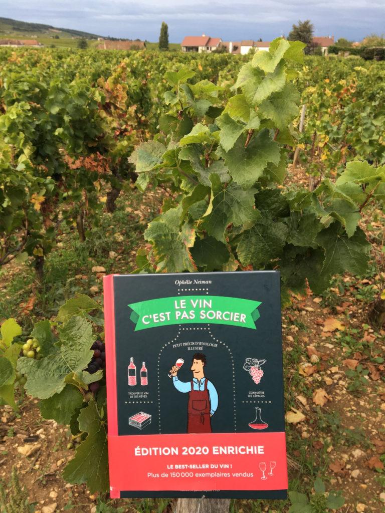 Livre : Le vin c'est pas sorcier