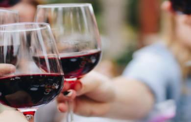 Le vin c'est pas sorcier : un livre sur le vin d'Ophélie Neiman