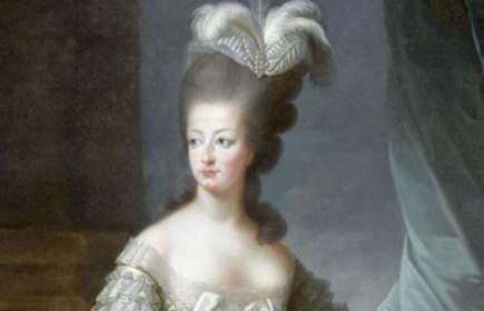 Les adieux à la reine livre : Marie-Antoinette
