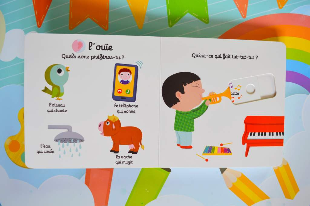 livre bébé : imagier des cinq sens