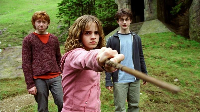 hermione granger livre sur les sorcières