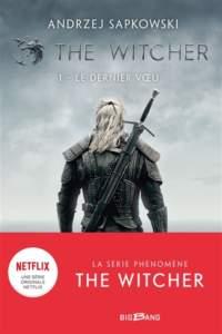 the witcher : roman fantasy