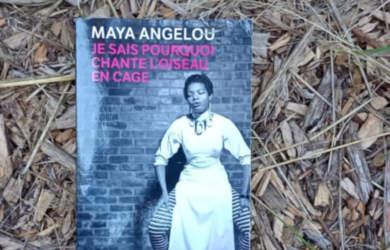 je sais pourquoi l oiseau chante en cage maya angelou